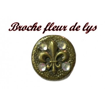 https://www.syagemercerie.fr/6481-thickbox/bouton-broche-motif-fleur-lys-en-metal-bronze-en-t22-mm-orne-de-strass-pour-customisations-et-decorations.jpg